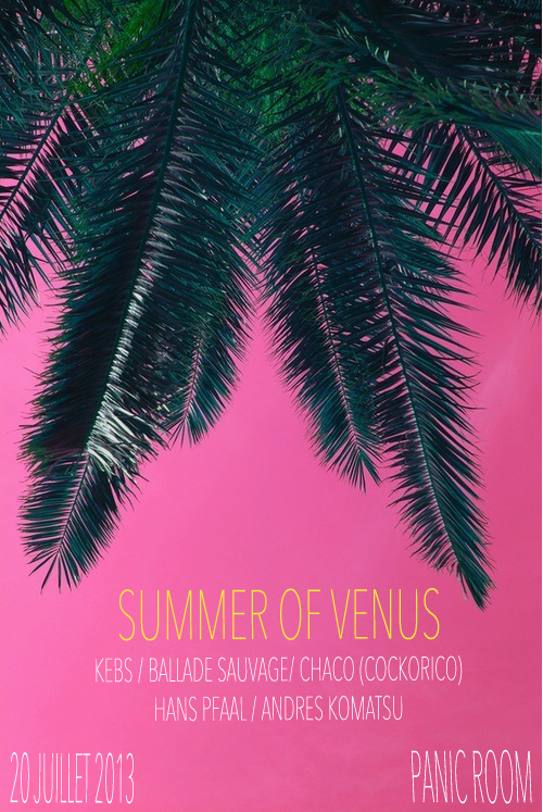SUMMER OF VENUS